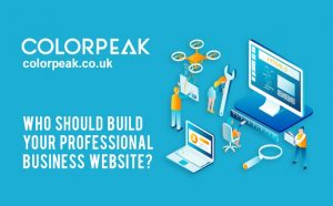 Who should build your professional business website