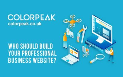 Who should build your professional business website? Web designer, web developer, graphic artist or graphic designer?