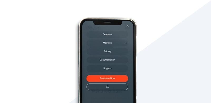 Full Screen Mobile Menu